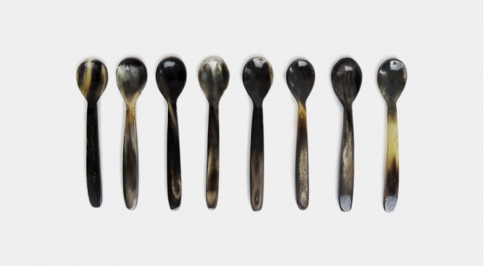 Horn Spoon Set